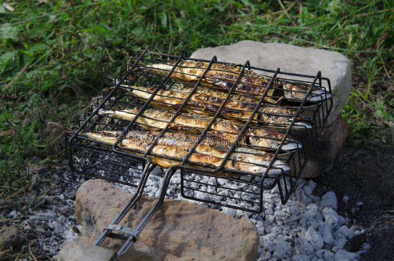 Рыбу скумбрии лежит на гриле и варят над открытым огнем : стоковые изображения