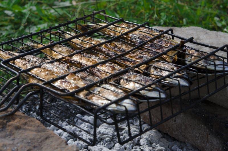Рыбу скумбрии лежит на гриле и варят над открытым огнем : стоковое изображение rf