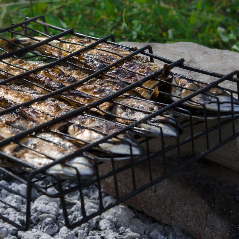 Рыбу скумбрии лежит на гриле и варят над открытым огнем : стоковые фото