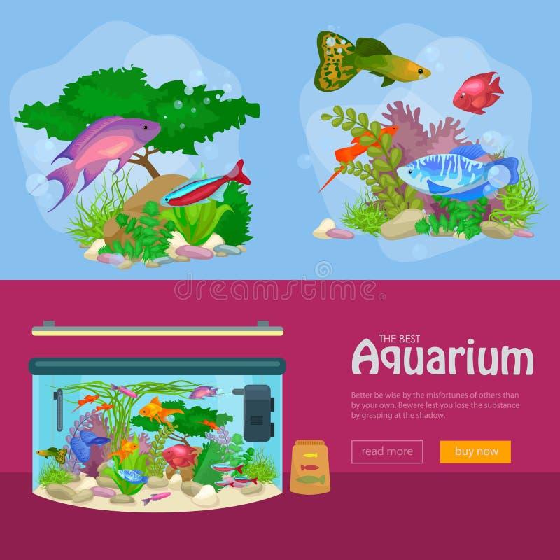 Рыбы аквариума, морская водоросль подводная, план шаблона знамени с морским животным иллюстрация вектора