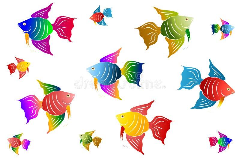 рыбы ангела цветастые иллюстрация штока