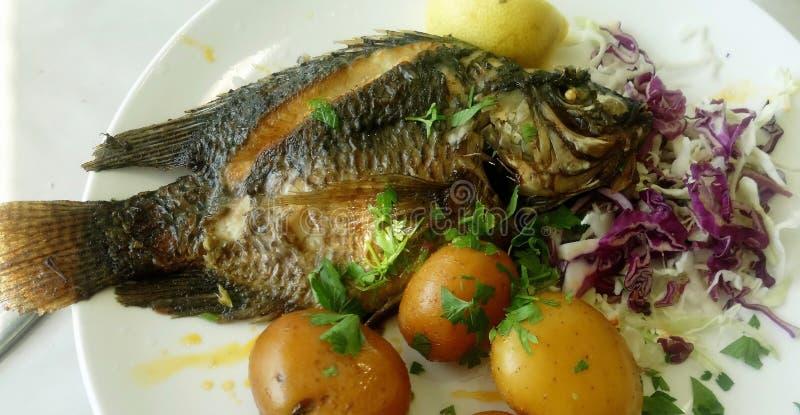 Рыбы апостола Питера стоковое изображение rf