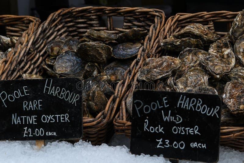 Рыбы в продовольственном рынке стоковое фото