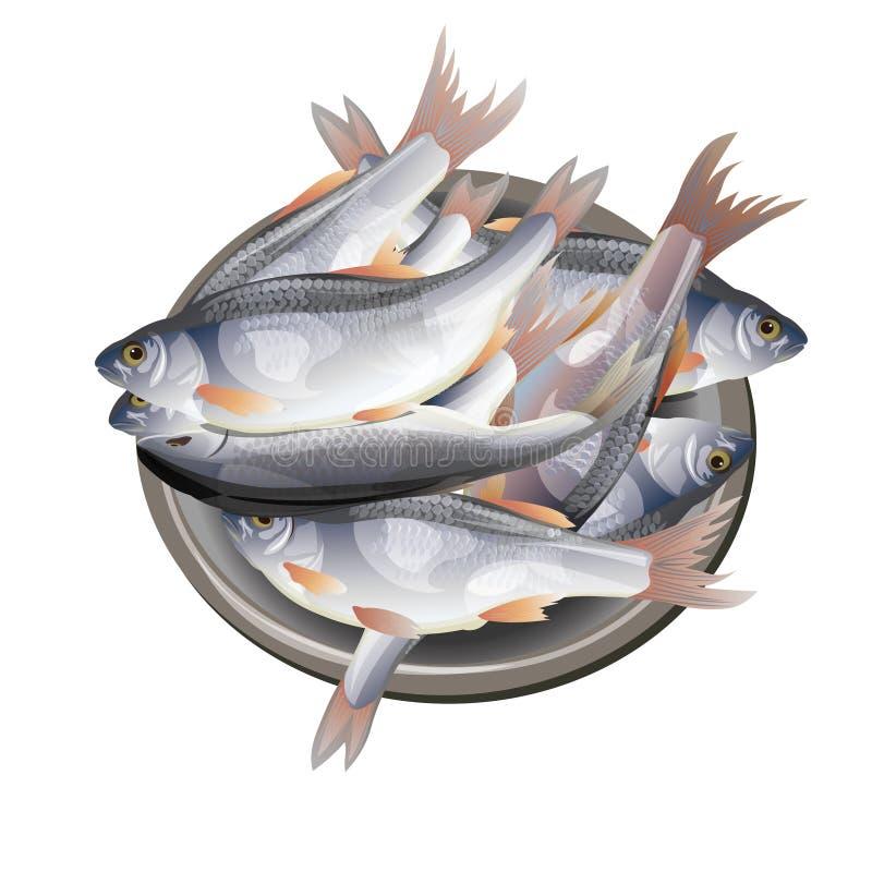 Рыбы в шаре стоковая фотография rf