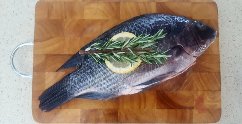 Рыбы для обедающего стоковые изображения rf
