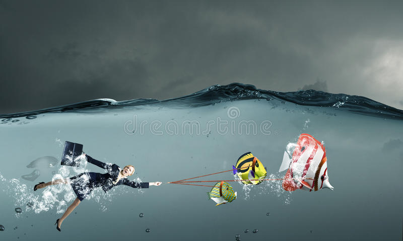 Рыбы задвижки большие стоковое изображение