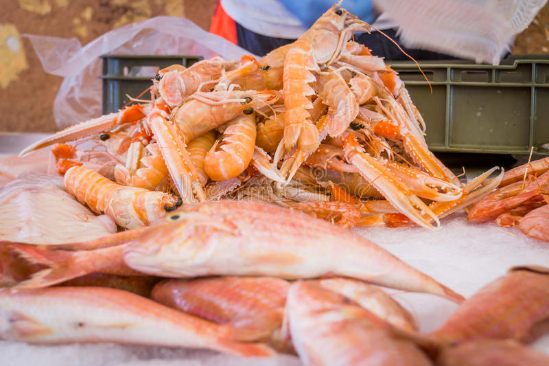 Рыбы и Scampi в рыбном базаре в разделении стоковое изображение