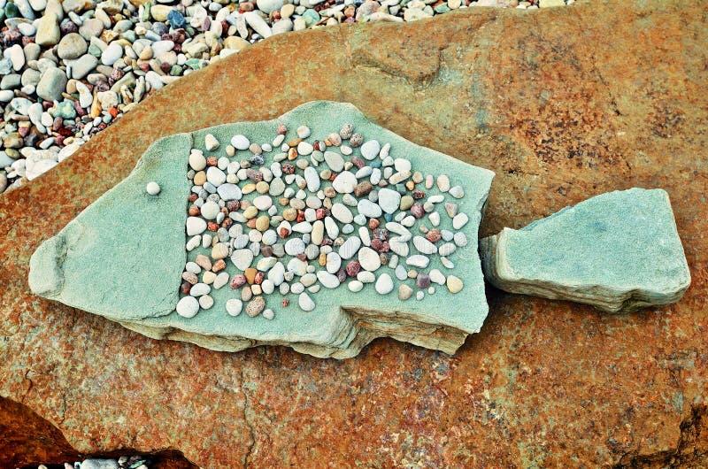 Рыбы камешков стоковое изображение rf