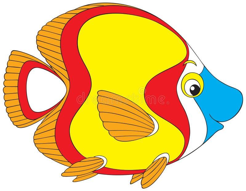рыбы коралла бесплатная иллюстрация