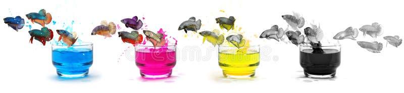 Рыбы покрытые в цвете чернил CMYK стоковое изображение rf