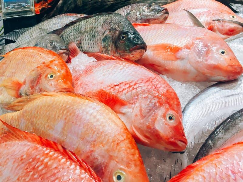 Рыбы свежие в супермаркете стоковые фотографии rf