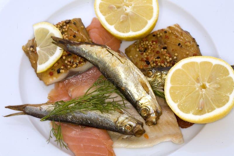 рыбы среда золы стоковая фотография rf