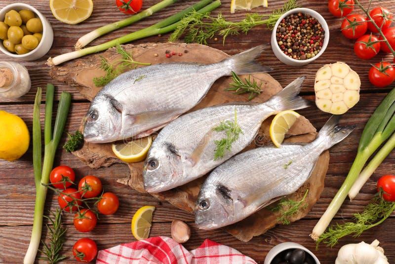 рыбы сырцовые стоковое фото