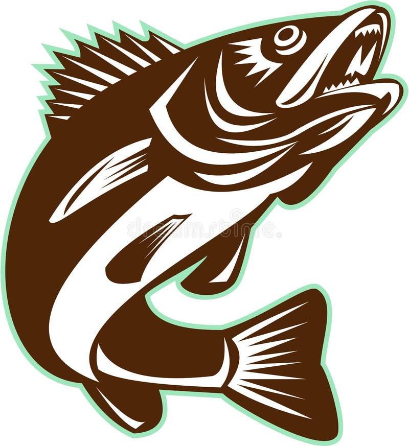 Рыбы Walleye скача изолированное ретро иллюстрация штока
