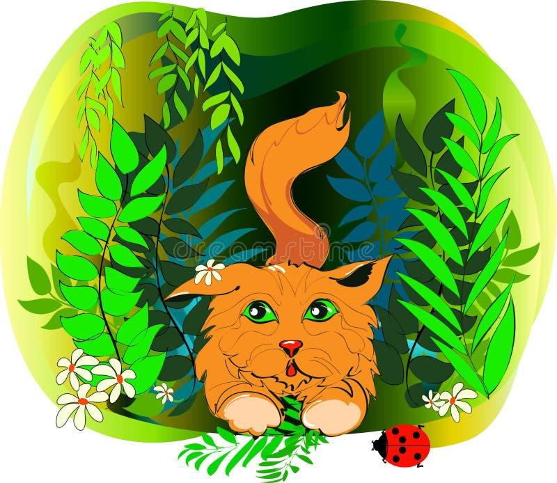 Рыжеволосый щенок в траве стоковое изображение