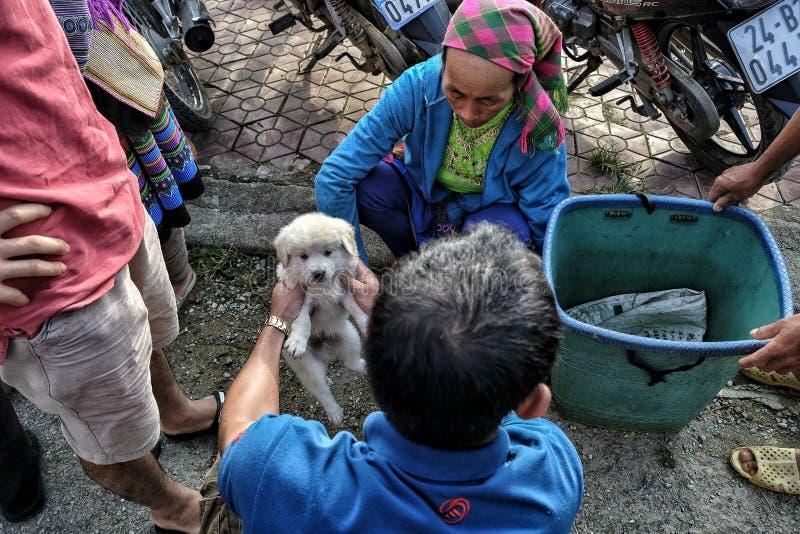 Рынок воскресенья в Bac Ha, Вьетнаме стоковые фотографии rf