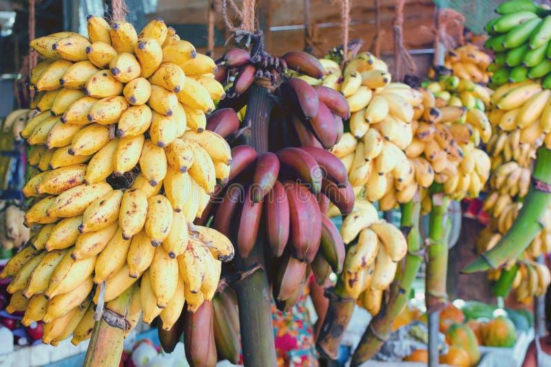 Рынок плодоовощ в бананах Шри-Ланки - желтых и красных на ветвях стоковые изображения