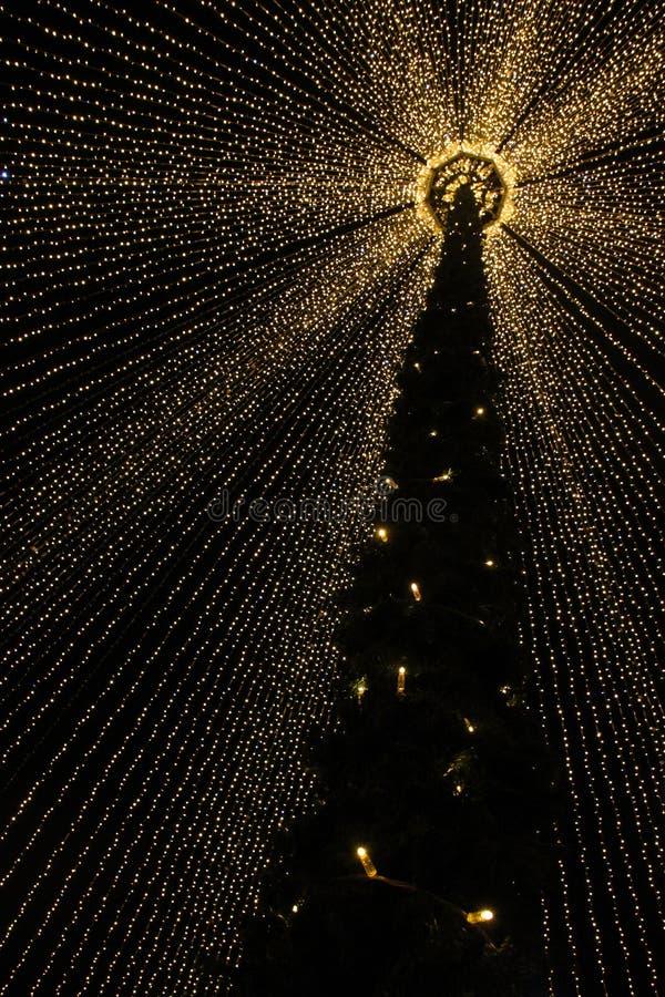 Рынок рождественской елки в другой перспективе стоковое изображение