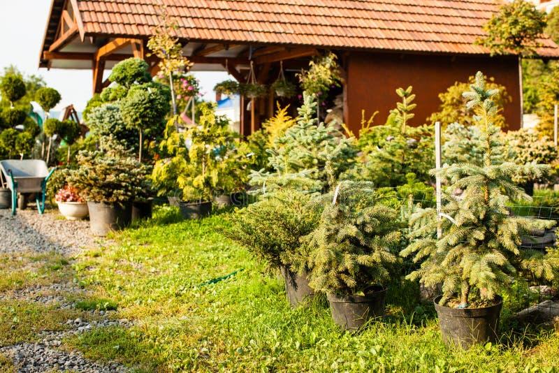Рынок сада внешний стоковая фотография