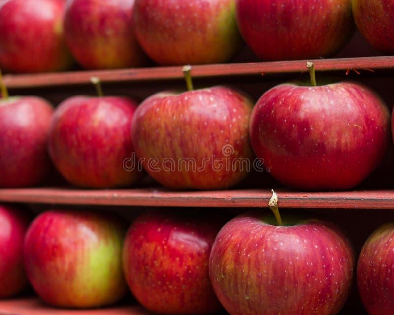 Рынок стойла свежих фруктов красного яблока здоровый стоковые фото