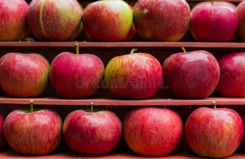 Рынок стойла свежих фруктов красного яблока здоровый стоковая фотография rf