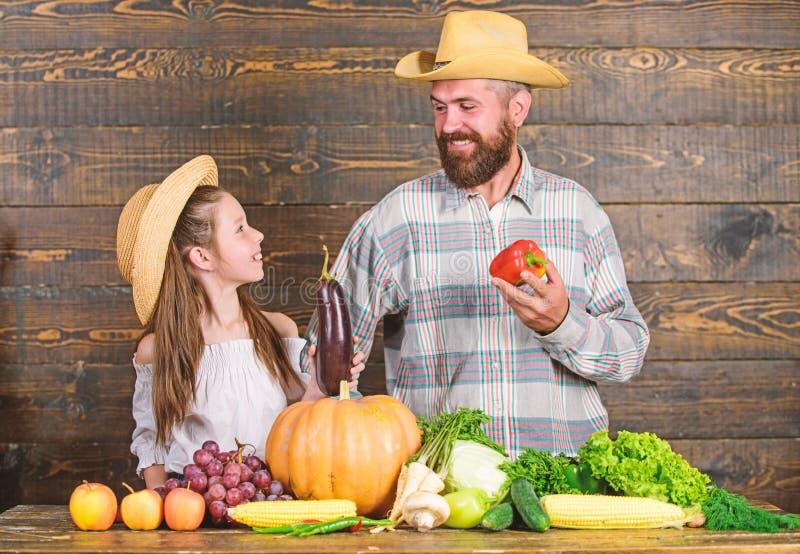 Рынок фермы с концепцией фестиваля фермы семьи сбора падения Образ жизни семьи сельской местности Фермер человека бородатый дерев стоковое изображение rf
