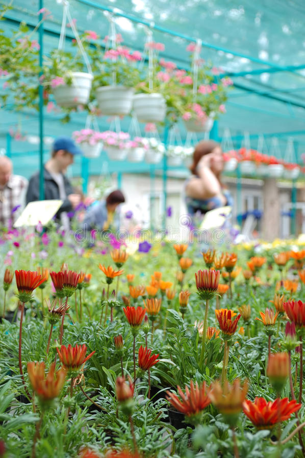 рынок цветка стоковое фото rf