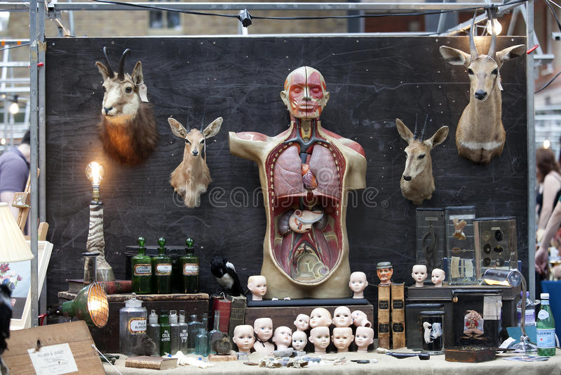 Рынок шутовства Spitalfields Наглядные пособия к человеческой анатомии для врачей стоковые фотографии rf