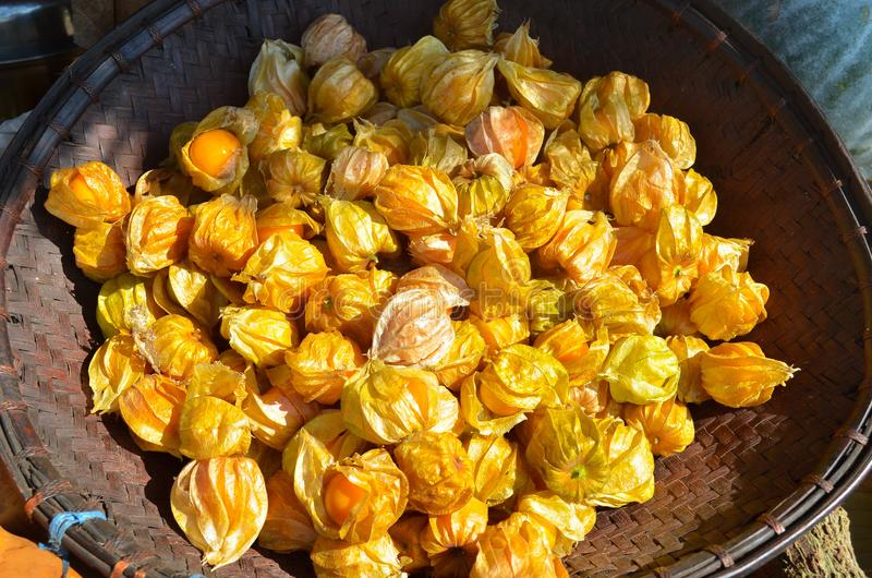 Рынок Doi Chaang стоковые изображения