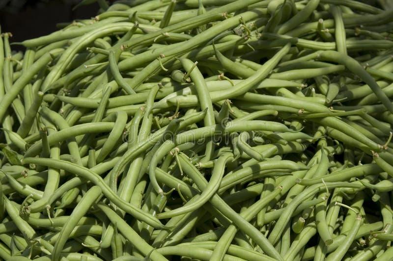 Download рынок S зеленого цвета хуторянина фасолей Стоковое Фото - изображение насчитывающей органическо, хуторянин: 6859912