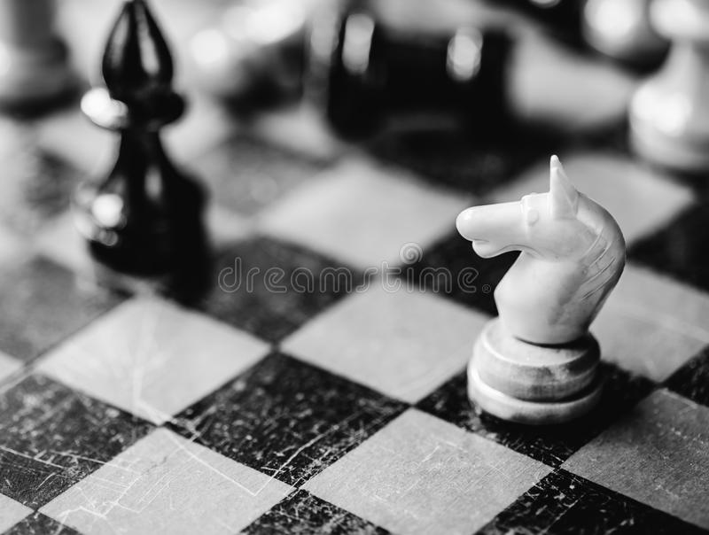 Рыцарь и епископ шахмат стоковое изображение rf