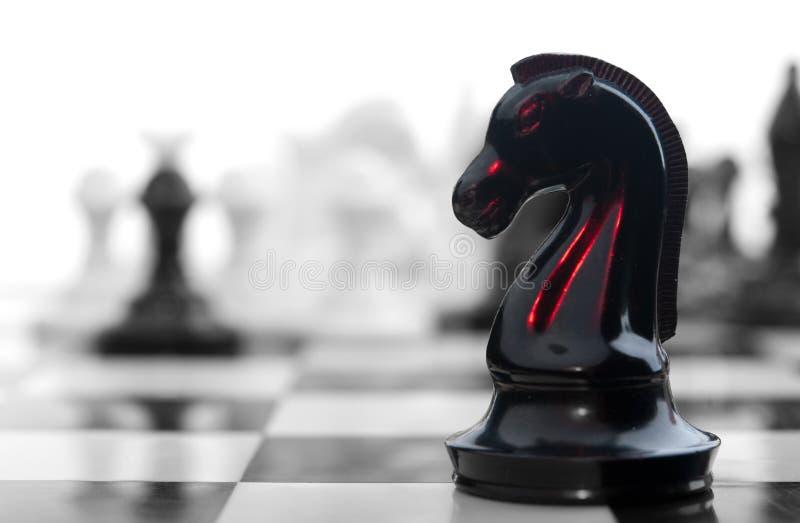 Рыцарь шахмат крови стоковое фото