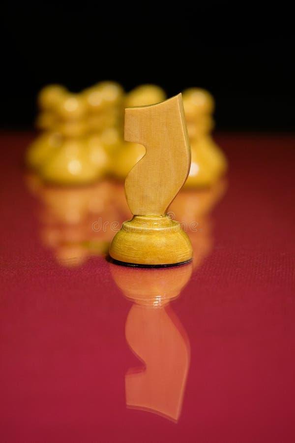 Рыцарь шахмат стоковые фотографии rf