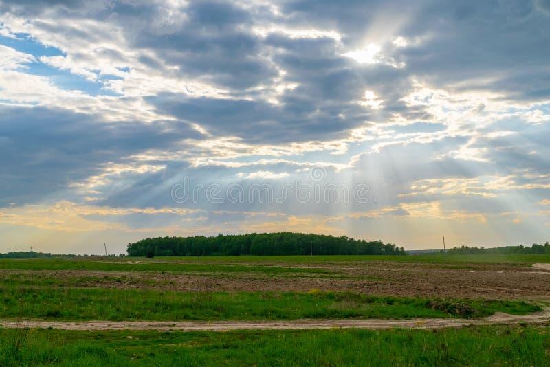 Рэй солнечного света стоковая фотография rf