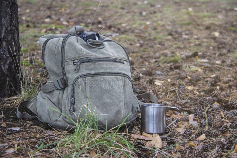 Рюкзак, кружка, электрофонарь лежит на траве в оборудовании туриста леса Прогулка в лесе и путешествовать стоковые фотографии rf