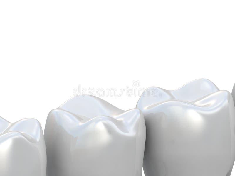 Рядок зуба бесплатная иллюстрация