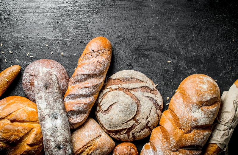 Ряд разных видов душистого хлеба стоковое фото