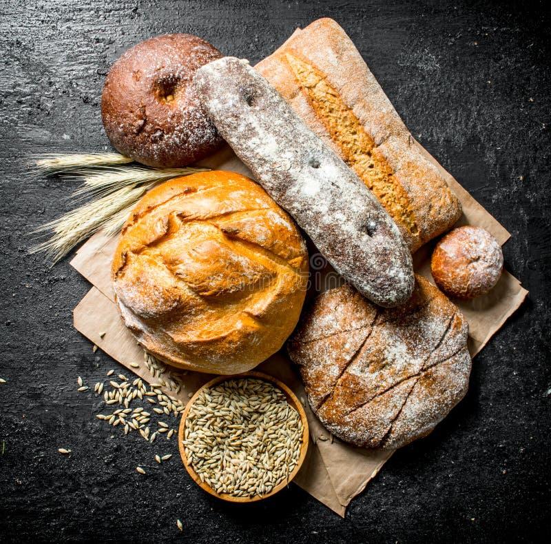 Ряд разных видов хлеба от рож и пшеничной муки стоковое фото rf