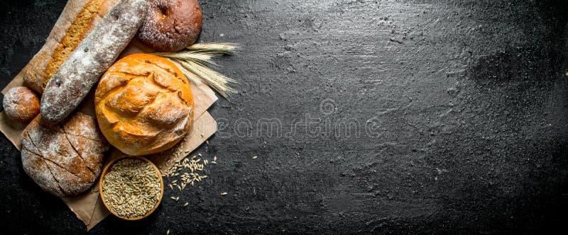 Ряд разных видов хлеба от рож и пшеничной муки стоковое фото