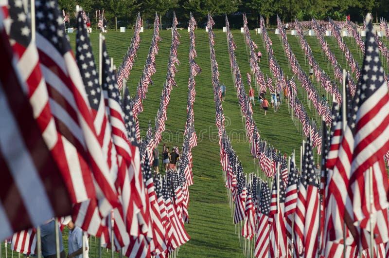 рядки американских флагов стоковое фото rf