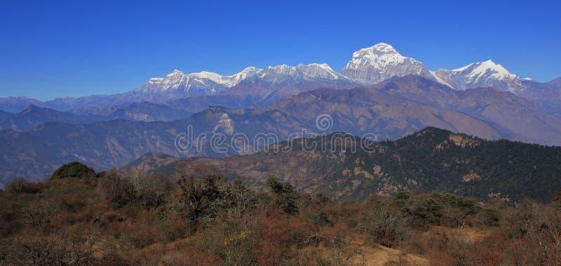 Ряд Dhaulagiri увиденный от места около холма Poon стоковое изображение
