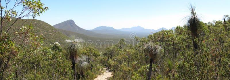 Ряд Nationalpark Стерлинга, южная западная Австралия стоковые фото
