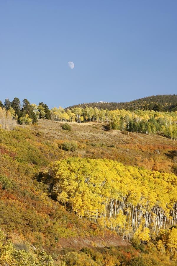 Ряд Sneffels держателя, Колорадо стоковые фотографии rf