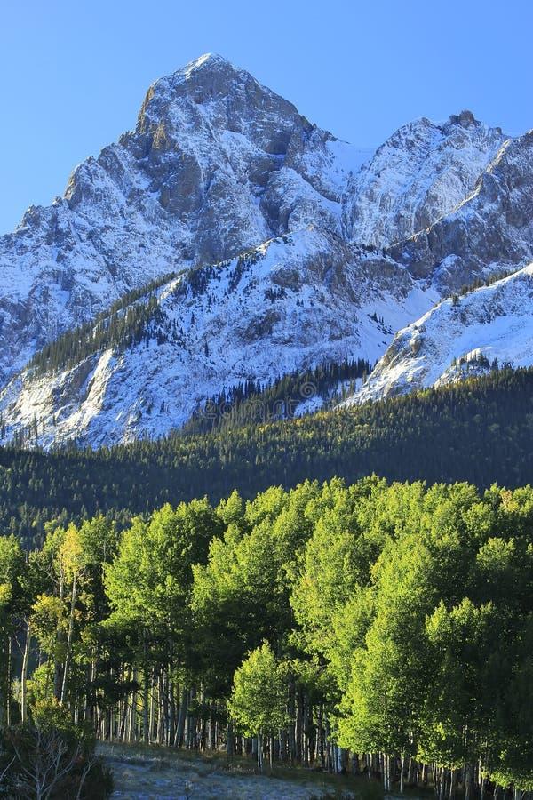 Ряд Sneffels держателя, Колорадо стоковые фото