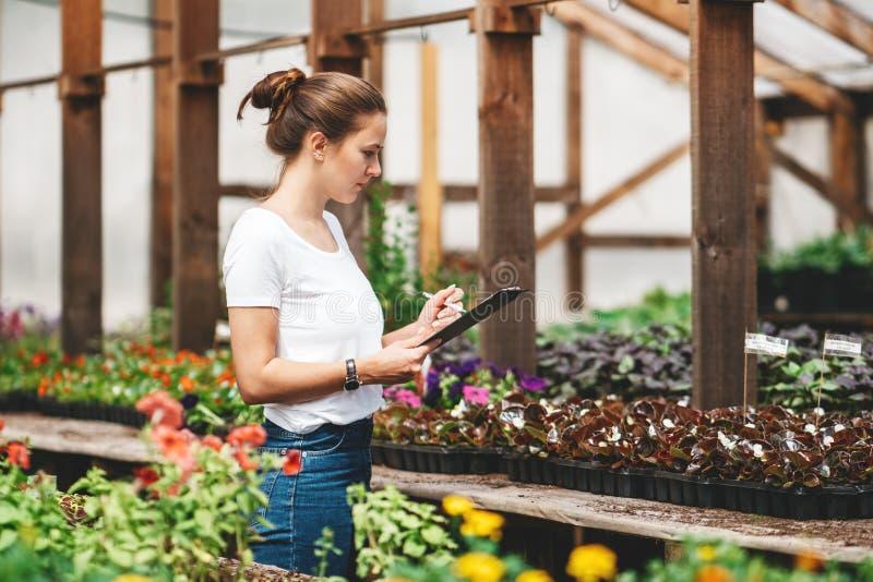 Садовник профессиональной женщины работая в парнике стоковое фото rf