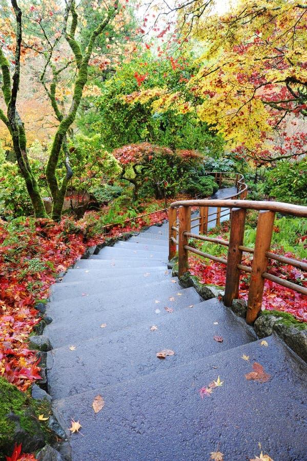 садовничает японец стоковое фото