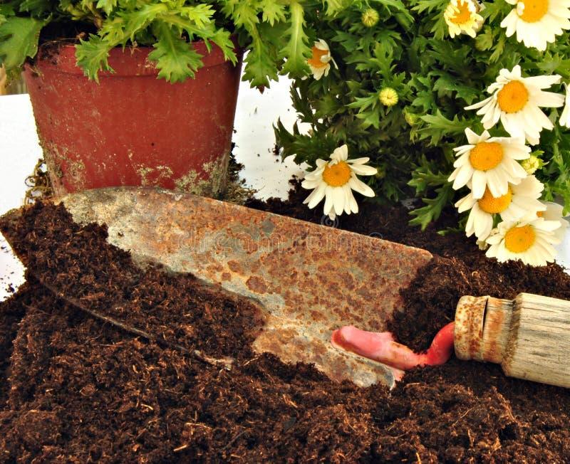 Download садовничать стоковое фото. изображение насчитывающей средства - 18399324