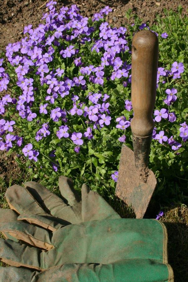 садовничать стоковые фотографии rf