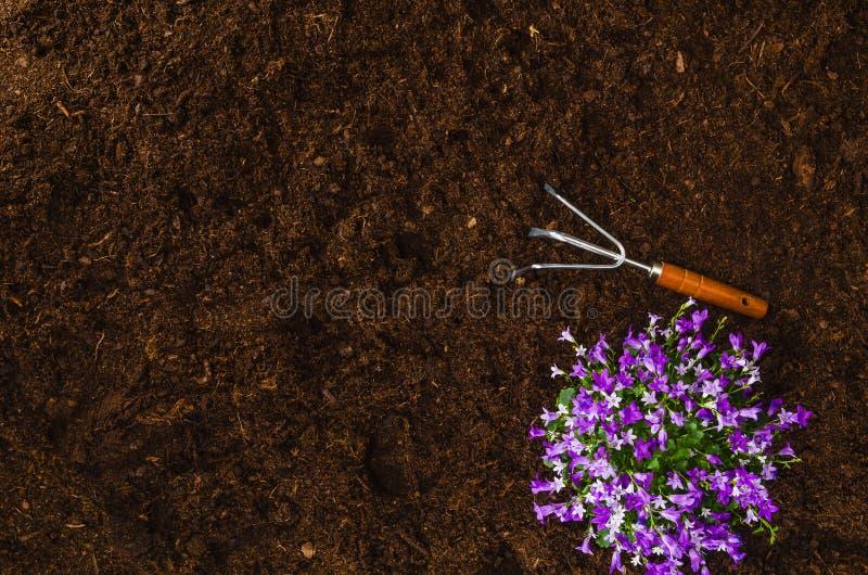 Садовничая инструменты на почве сада текстурируют взгляд сверху предпосылки стоковое изображение