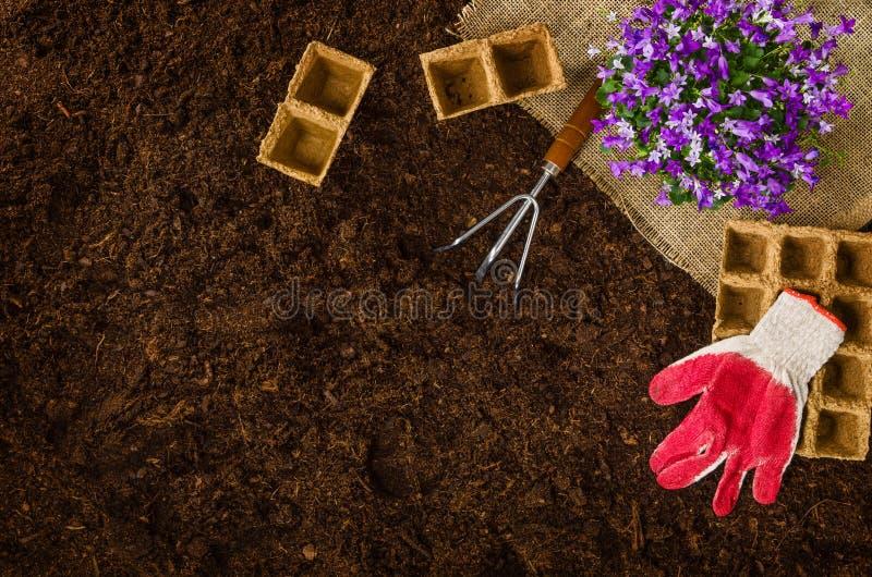Садовничая инструменты на почве сада текстурируют взгляд сверху предпосылки стоковые фото